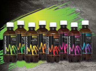 Kombucha Healthy Organic Green Tea Drink: 350ML - MIXED BOX